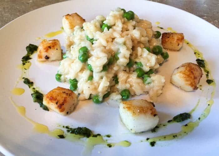 Champagne Risotto with Seared Scallops and Peas 1
